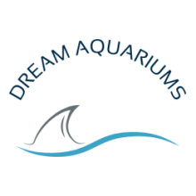 DREAM AQUARIUMS