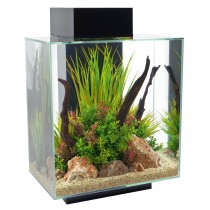 FLUVAL EDGE 2.0 46L AQUARIUM SET-GLOSS BLACK
